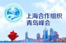 2018年 上合組織峰會